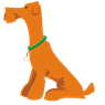 Civismo canino